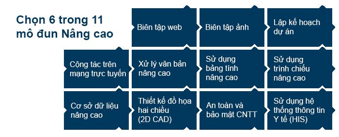 ICDL Profile 2