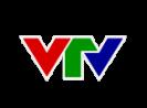 Vietnam Television Logo (1)